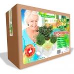 Здоровья Клад Проращиватель семян 4-х модульный