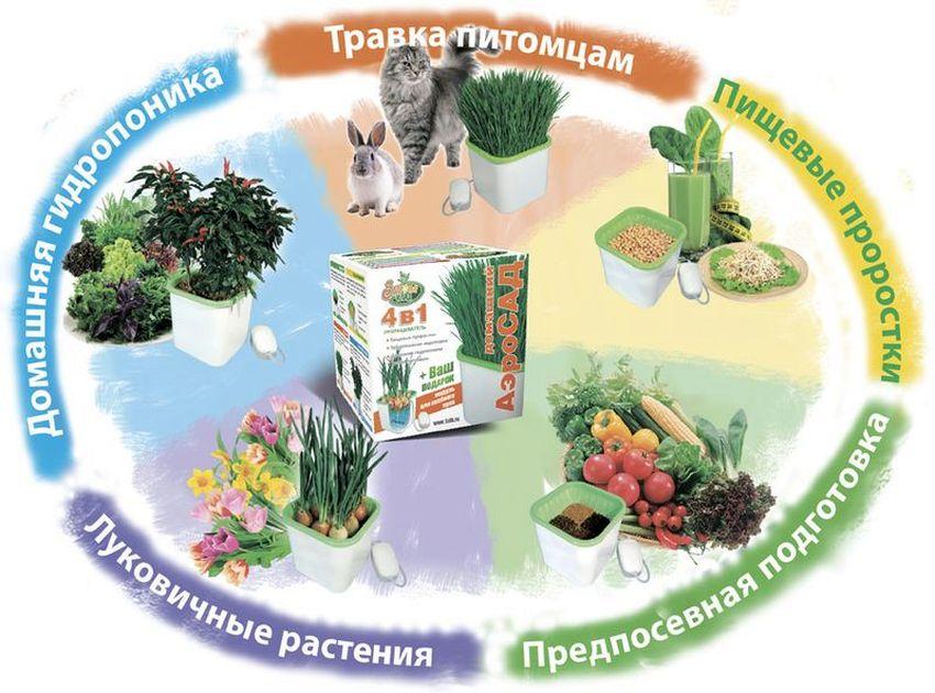Для чего нужен прорасщиватель семян