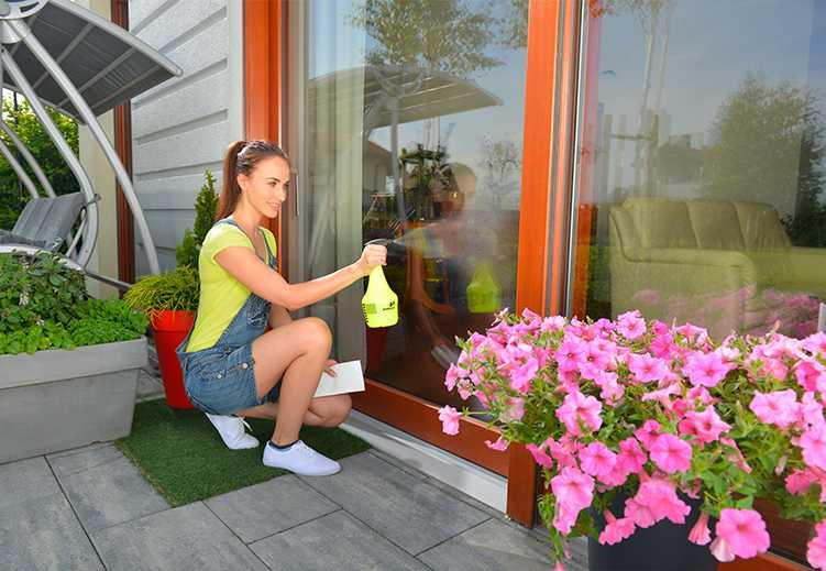 Ручные пульверизаторы для города и домашних цветов