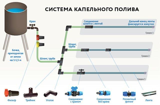 Схема системы автоматического полива в применении к капельному поливу