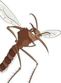 Коварные комары